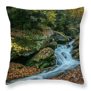 Lower Upper Creek Falls Throw Pillow