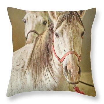 El Paso Art Association Throw Pillows