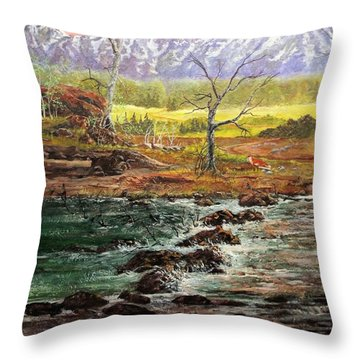 Lowwater Crossing  Throw Pillow