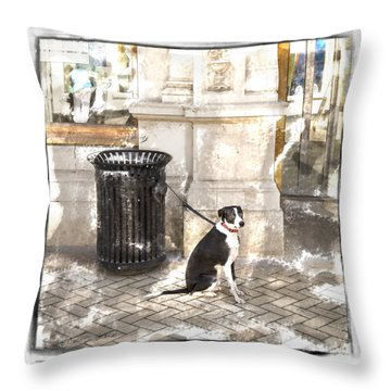 Throw Pillow featuring the photograph Loyal Dog by Craig J Satterlee