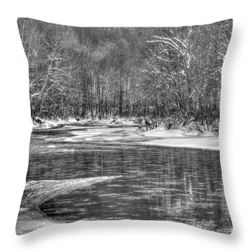 Loyalhanna Creek Bw - Wat0097 Throw Pillow