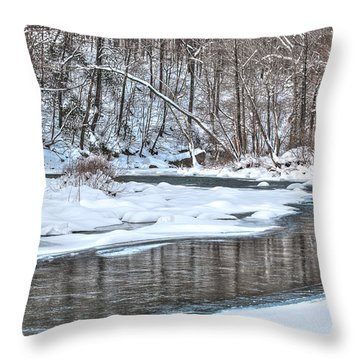 Loyalhanna Creek - Wat0100 Throw Pillow
