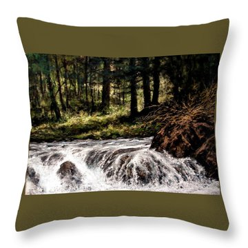Lucia Falls In July Throw Pillow