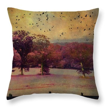 Lucid Ehereal Dream Throw Pillow