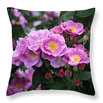 Lucky Floribunda Roses Throw Pillow by Rona Black