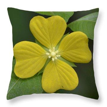Lucky Four Leaf Flower Throw Pillow