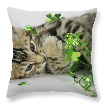 Lucky Kitten Throw Pillow by Shoal Hollingsworth