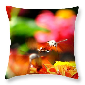 Throw Pillow featuring the photograph Lucky Shot by Ana Maria Edulescu
