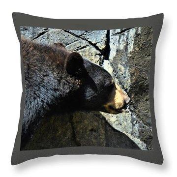 Lumbering Bear Throw Pillow