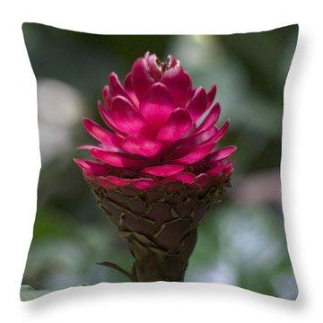 Luminous Ginger Throw Pillow