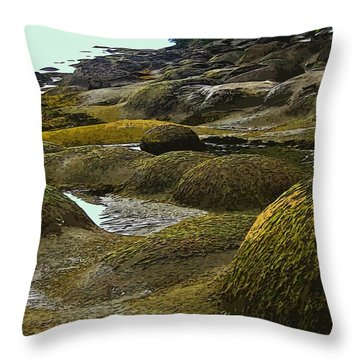 Lumps And Bumps Along Gabriola's Shoreline Throw Pillow by Anne Havard