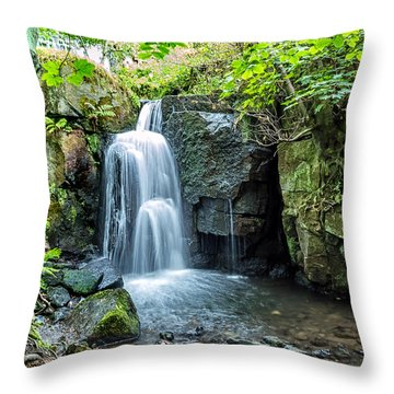 Lumsdale Falls Throw Pillow