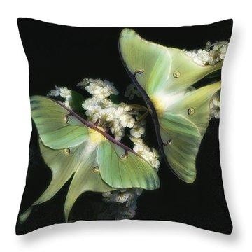 Luna Moths Throw Pillow