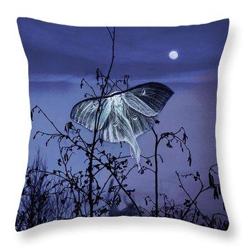 Luna Nights Throw Pillow
