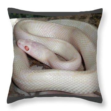 Luna White Snake Throw Pillow
