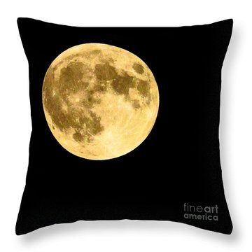 Throw Pillow featuring the photograph Lunar Close Up by Sandy Molinaro