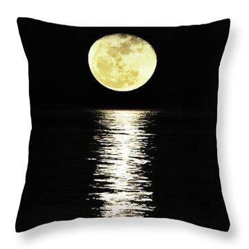 Lunar Lane Throw Pillow