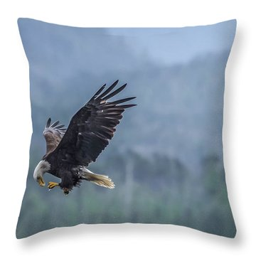 Throw Pillow featuring the photograph Lunch To Go by Timothy Latta