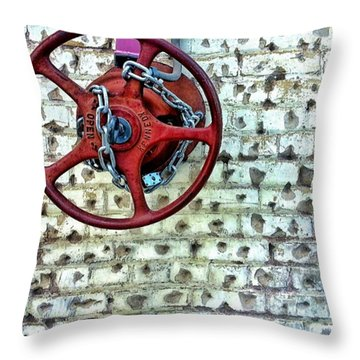 Lunchtime Photo.  #instagramers Throw Pillow by Sean Wray