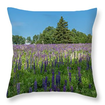 Lupine Field Throw Pillow