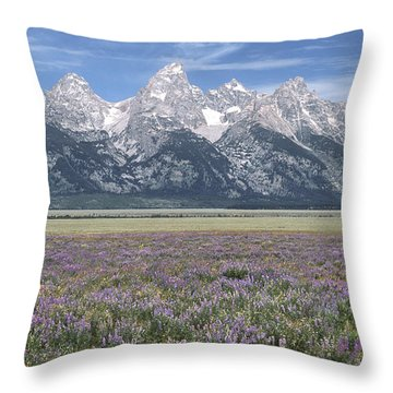 Lupine And Grand Tetons Throw Pillow
