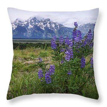 Lupine Beauty Throw Pillow