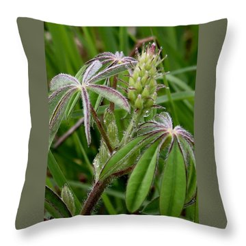 Lupine Bud Throw Pillow
