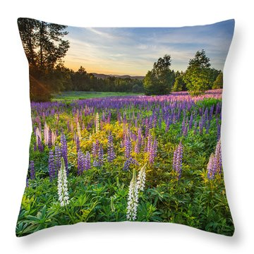 Lupine Field At Sunset Throw Pillow