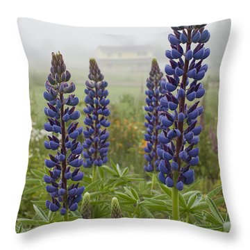 Lupine In The Fog Throw Pillow