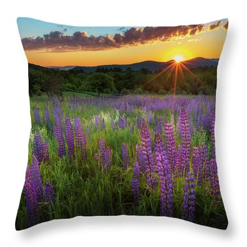 Throw Pillow featuring the photograph Lupine Lumination by Bill Wakeley
