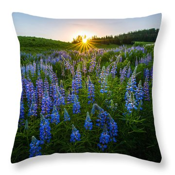 Throw Pillow featuring the photograph Lupine Meadow by Dustin  LeFevre