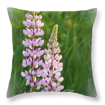 Throw Pillow featuring the photograph Lupine Pair by Paul Miller