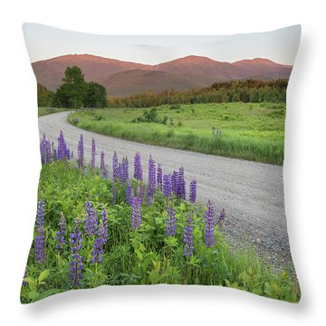 Lupine Sunset Road Throw Pillow