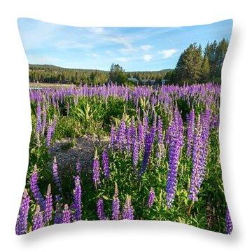 Lupines At Lake Tahoe Throw Pillow