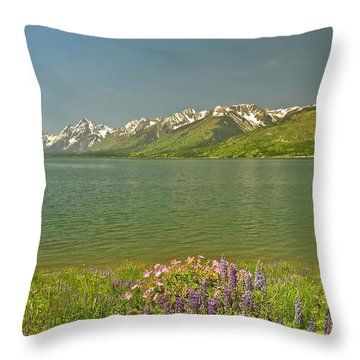 Lupines In The Tetons Throw Pillow
