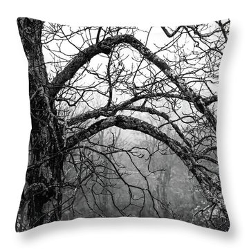 Throw Pillow featuring the photograph Lure Of Mystery by Karen Wiles