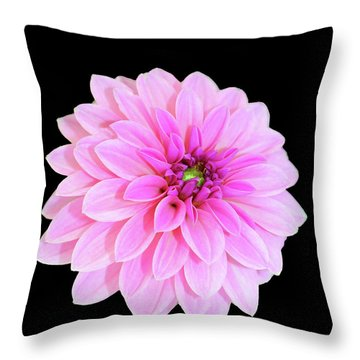 Luscious Layers Of Pink Beauty Throw Pillow