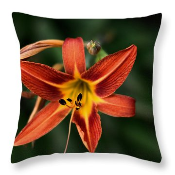 Luscious Tiger Lily Throw Pillow by Aliceann Carlton