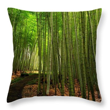 Lush Bamboo Forest Throw Pillow by Yali Shi