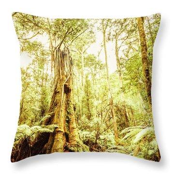 Lush Tasmanian Forestry Throw Pillow