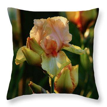 Luxurious Nature 6764 H_2 Throw Pillow