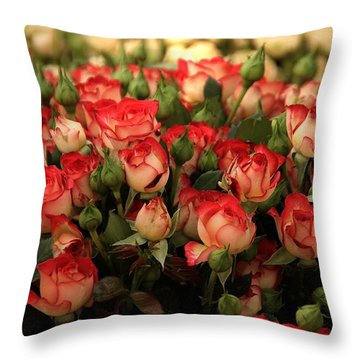 Luxurious Throw Pillow by Ramabhadran Thirupattur