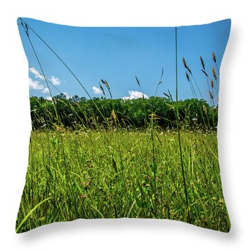 Lying In The Grass Throw Pillow