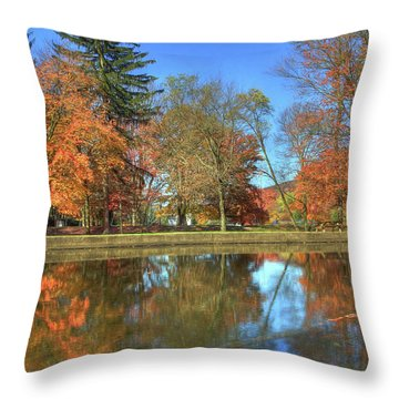 Throw Pillow featuring the photograph Lykens Glen Reflections by Lori Deiter