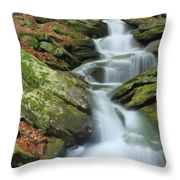Lynnes Falls New England National Scenic Trai Throw Pillow by John Burk