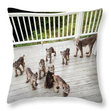 Lynx Family Portrait Throw Pillow