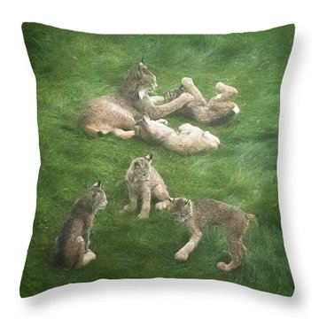Throw Pillow featuring the photograph Lynx In The Mist by Tim Newton