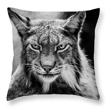 Lynx Portet Throw Pillow