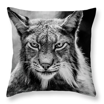 Lynx Portet Throw Pillow
