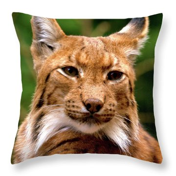 Lynx Portrait Throw Pillow